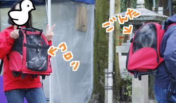 2015kyoto-04.jpg