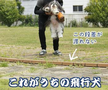 hikouken-01.jpg