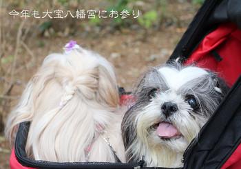 daihou-01.jpg