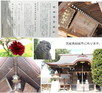 takedasuga-02.jpg